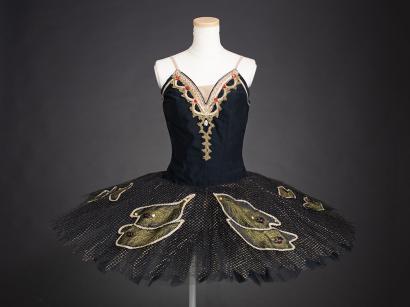 レンタル バレエ 衣装